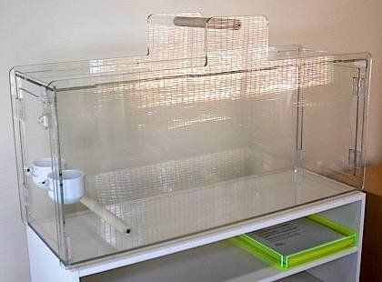 Acrylic Bird Carrier- Travel Cage- Parrot-Vacation Bird Home
