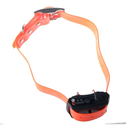 Shock Collar For Dogs That Bite