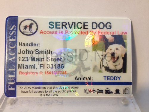 38a331cc5c35 Holographic Service Dog ID Card Horizontal   Shop   Pet Lovers Center