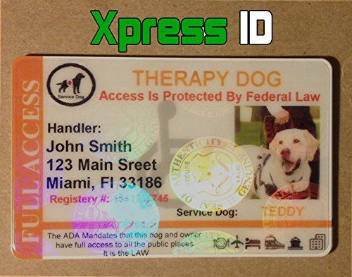 ea5b061dedbd Holographic Therapy Dog ID Card Horizontal   Shop   Pet Lovers Center