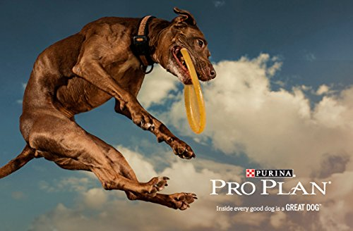 Purina Pro Plan Wet Dog Food, Select, Adult Sensitive Skin