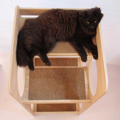 sturdy cat tree tower  solid  unfinished  birch plywood  with four carpeted climbing platforms
