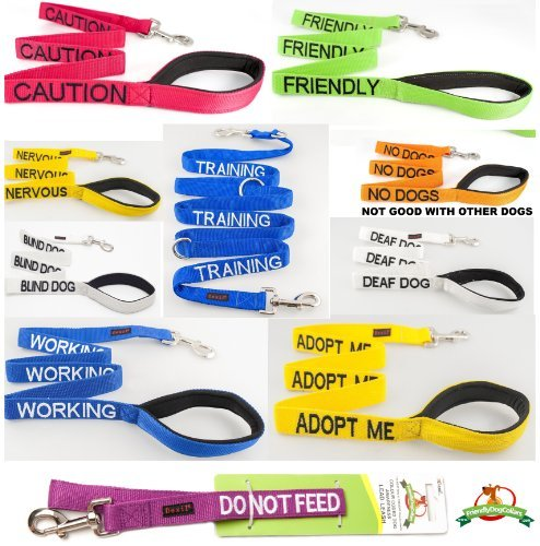 "TRAINING"" Blue Color Coded 4 Foot Dog Leash (Do Not Disturb"