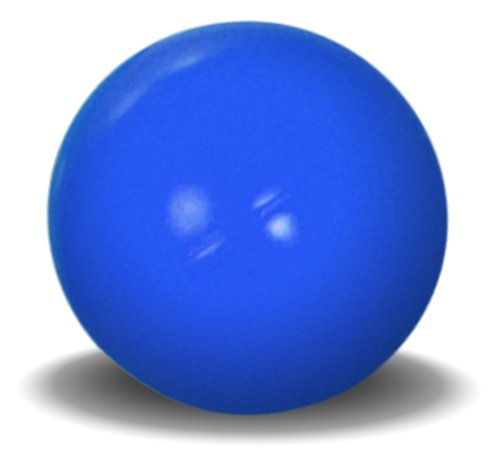 Virtually Indestructible Best Ball For Dogs 10 Inch