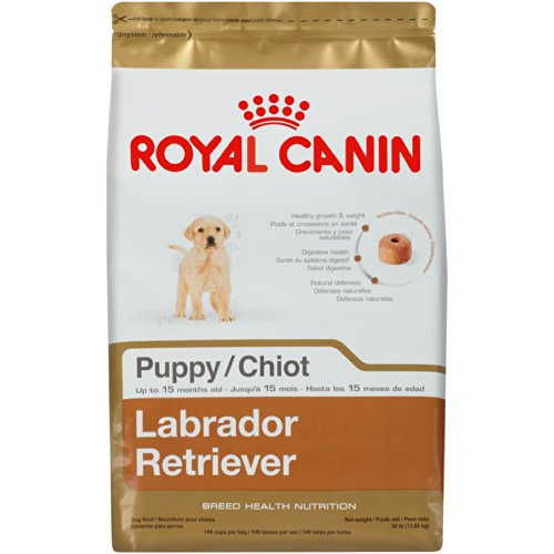 Dry Puppy Food With High Meat Content