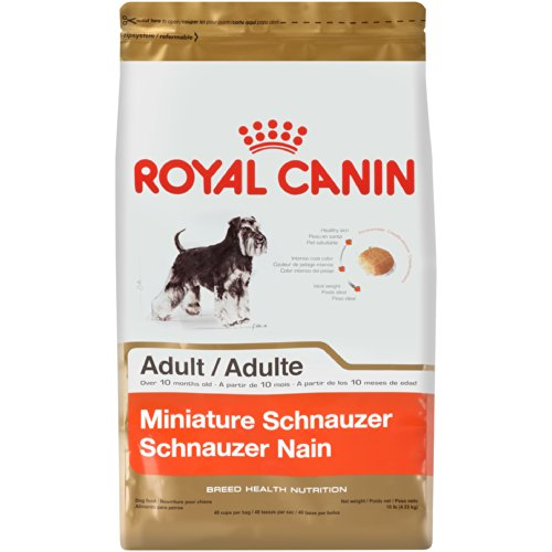 royal canin miniature schnauzer dry dog food 10 pound bag shop pet lovers center. Black Bedroom Furniture Sets. Home Design Ideas