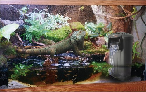 ... WATER-LEVEL-FILTER-Perfect-for-Turtle-Snake-Lizard-and-Fish-Tanks-0-3